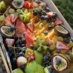 Catering fruit platter box